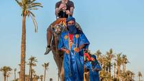 Marrakech Palmeraie Palm Groves and Desert Camel Ride, Marrakech, Half-day Tours