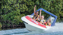 Cancun Jungle Tour Adventure: Speed Boat and Snorkeling, Cancun
