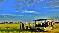 5-Day Botswana Mobile Camping Safari to Moremi and Savuti from Maun, Maun, Multi-day Tours