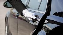 One Way Private Departure Transfer from Houston Area Accommodation to Galveston Port, Houston, Port...