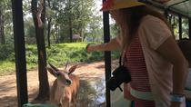 Private Full-Day Beijing Wildlife Park Tour, Beijing, Nature & Wildlife
