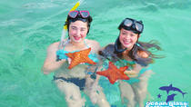 Private Glass Bottom Boat and Stingray Bay Encounter from Punta Cana, Punta Cana