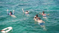 Private Glass Bottom Boat and Stingray Bay Encounter from Punta Cana, Punta Cana, Glass Bottom Boat ...