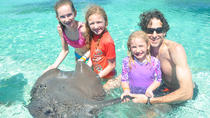 Private Glass Bottom Boat and Stingray Bay Encounter from Punta Cana, Punta Cana, Glass Bottom Boat...