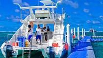 Punta Cana Party Catamaran Cruise, Punta Cana, Helicopter Tours