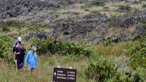 Trekking at Haleakala: Elevation 10000 Feet and 11 Mile Challenge