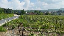 Small-Group Day Tour of Epernay: Picturesque Moet et Chandon and Hautvillers with Champagne Tasting...
