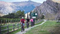 Bike The Wineries Half Day Bike Tour from Queenstown, Queenstown, Bike & Mountain Bike Tours