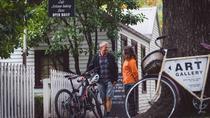 Half-Day Queenstown Winter Trail Bike Tour, Queenstown, Bike & Mountain Bike Tours