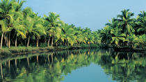 7-Day Tour: Spice Lands of Kerala from Kochi, Kochi, Multi-day Tours