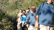 Private Trek from Rishikesh to Kunjapuri, Rishikesh, Hiking & Camping