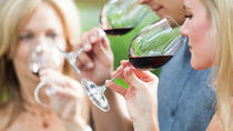 8 uur Napa Valley Wine Tasting Tour vanuit San Francisco, Napa & Sonoma, Wine Tasting & Winery Tours