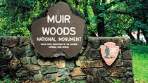 Private Tour durch Muir Woods, Sausalito und San Francisco, San Francisco, Stadtbesichtigungen