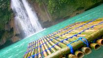 Kawasan Falls and Mantayupan Falls in One Day from Cebu, Cebu, Day Trips