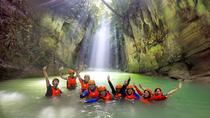 Oslob Whale Shark and Kawasan Falls Canyoneering Day Tour, Cebu, 4WD, ATV & Off-Road Tours