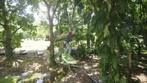 High Ropes Course Adventure in Jaco, Jaco, Ziplines