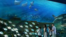1 Day E-Ticket to the Singapore SEA Aquarium for Small Group, Singapore, Attraction Tickets