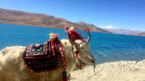 4-Night Lhasa and Lake Yamdrok Explorer Tour, Lhasa, Multi-day Tours