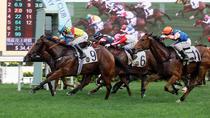 Chinese New Year Horse Racing Tour in Hong Kong, Hong Kong, New Years