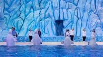 E-Ticket: Zhuhai Chimelong Ocean Kingdom, Circus & Penguin Hotel 1-night Coupon, Zhuhai, Theme Park...
