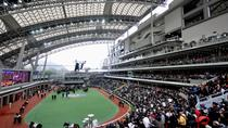 Hong Kong Horse Racing Tour, Hong Kong, Seasonal Events