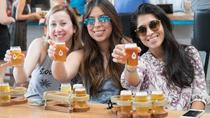 Austin Live Music and Brewery Tour, Austin, Beer & Brewery Tours