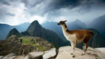 5-Day Machu Picchu and Highlights of Cusco, Cusco, Multi-day Tours