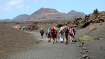 3-Volcanoes Guided Walking Tour from Lanzarote , Lanzarote, Walking Tours