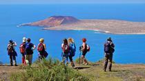 Monte Corona Volcano and Cliff Hike from Lanzarote, Lanzarote, Nature & Wildlife
