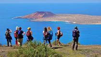 Volcano Monte Corona and Cliff Walking Tour, Lanzarote, Nature & Wildlife