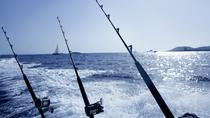 Private Punta Cana Half-Day Deep Sea Fishing Charter, Punta Cana, Fishing Charters & Tours