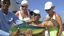 Punta Cana Half-Day Deep Sea Fishing Charter, Punta Cana, Fishing Charters & Tours