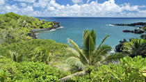 Full-daagse Maui Tour: Road to Hana Tour, Maui, Full-day Tours