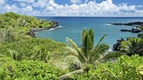 Full-Day Maui Tour: Road to Hana Tour, Maui