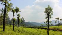 7 Days Serene Kerala Package - Private, Kochi, Multi-day Tours
