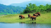 Kerala Hills, Backwaters & Wildlife 5 days (Private), Kochi, Multi-day Tours
