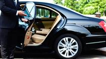 Private transfer from HBE airport to Alexandria Hotel, Alexandria