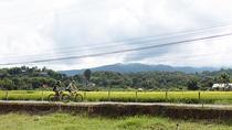 FIELDS OF GOLD Mountain Biking Tour Chiang Mai, Chiang Mai, Bike & Mountain Bike Tours