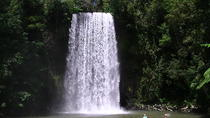 Atherton Tablelands Waterfalls Day Trip from Cairns, Cairns & the Tropical North, Wine Tasting ...