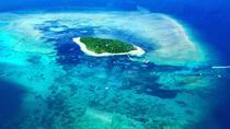 Private Scenic Flight Reef and Rainforest Tour, Cairns & the Tropical North, Private ...