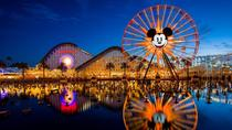 Private Tours at Disneyland and California Adventure, Anaheim & Buena Park, Day Trips
