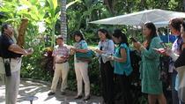 A Queen and A Princess Walking Tour, Oahu, Cultural Tours