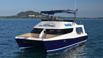Koh Tao Dive Tour Including 2 Dives for Certified Divers , Koh Samui, Snorkeling