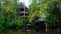 4-Day Ecuador Amazon Jungle Tour - Lodge in Cuyabeno Reserve, Galapagos Islands, Multi-day Tours