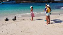 4-Day Galapagos Land Tour: San Cristobal and Santa Cruz Island, Galapagos Islands, Multi-day Tours