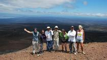 4-Day Galapagos Land Tour Visiting Isabela and Santa Cruz, Galapagos Islands, Multi-day Tours