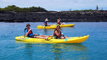 5-Day Galapagos Islands plus Bike, Kayak, Hike, Snorkel, Galapagos Islands, Multi-day Tours