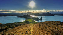 6-Day Galapagos Hotel-Based Tour: Santa Cruz and Navigable Islands, Galapagos Islands, Multi-day ...