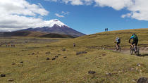 Cotopaxi National Reserve Bike and Hike Day-Trip, Quito, Day Trips