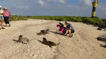 Espanola Galapagos Day Trip from San Cristobal Island, Galapagos Islands, Day Trips